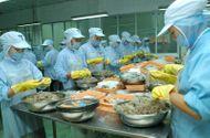 Tin tức - Hai lô tôm xuất khẩu của Việt Nam bị phát hiện có chất cấm