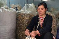 Sức khoẻ - Làm đẹp - Người nắm giữ bài thuốc dân tộc Dao chữa khỏi hoàn toàn các bệnh xương khớp