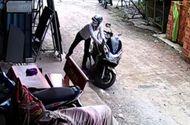 Tin tức - Thua độ World Cup, đi theo bạn trộm xe máy