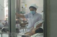Tin tức - Đắk Lắk: Xuất hiện ổ dịch cúm A/H1N1 tại gia đình chăn nuôi gà
