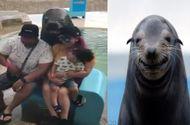 Tin thế giới - Video bất ngờ với chú hải cẩu có khả năng tạo dáng cực ngầu khi chụp ảnh