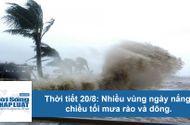 Tin tức - Thời tiết hôm nay 20/8: Miền Bắc mưa lớn