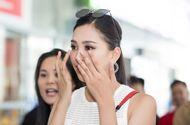Hoa hậu Tiểu Vy xúc động bật khóc trong ngày trở về quê nhà Hội An