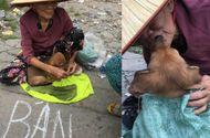 Tin tức - Rưng rưng với nụ hôn tạm biệt của bà lão nghèo khi phải đem bán chú chó nhỏ