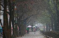 Tin trong nước - Dự báo thời tiết ngày 20/10: Áp thấp gây mưa ở nhiều nơi
