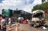 Tin tức - Xe khách đâm xe tải, hàng chục người gào khóc trên Quốc lộ