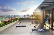 Kinh doanh - Dự án có nơi tập yoga giữa không gian xanh trên đỉnh tòa nhà