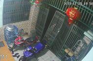 Tin tức - Video: Tên trộm táo tợn tháo hẳn cổng nhà, rồi lẻn vào lấy cắp xe máy