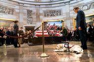 Tin tức - Video: Chú chó săn Sully lưu luyến tiễn đưa cố Tổng thống Bush