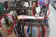 """Tin tức - Video: Nhân viên mải mê trang điểm, khách nữ thản nhiên bỏ quần áo vào túi rồi """"quên"""" trả tiền"""