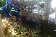 Tin tức - Cần thủ tá hỏa vứt câu bỏ chạy khi phát hiện thi thể cô gái nổi trên sông Sài Gòn