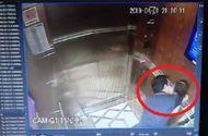 Pháp luật - Vụ bé gái bị sàm sỡ trong thang máy: Ranh giới giữa dâm ô và quấy rối tình dục rất mong manh