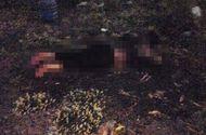 Tin trong nước - Bàng hoàng phát hiện đôi nam nữ bốc cháy như đuốc ở bãi đất trống