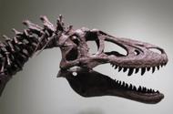 Hóa thạch khủng long độc nhất thế giới được rao bán với giá gần 70 tỷ đồng