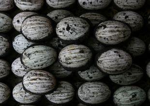 Dân mạng Trung Quốc bức xúc vì chủ nhà hàng bị bắt vì tàng trữ trứng vịt bắc thảo