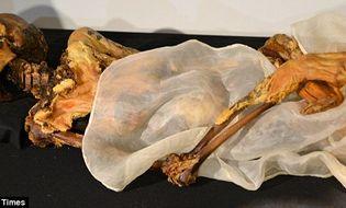 Thế giới 24h - Hình xăm và những điều bí ẩn về xác ướp 2.500 tuổi tại Nga