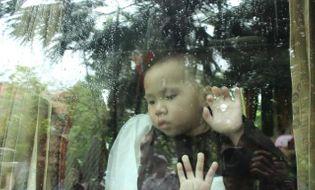 Sự kiện hàng ngày - Thêm 8 trẻ chùa Bồ Đề chuyển về nơi ở mới
