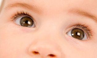 Sức khoẻ - 4 bước đơn giản cho đôi mắt luôn khỏe mạnh