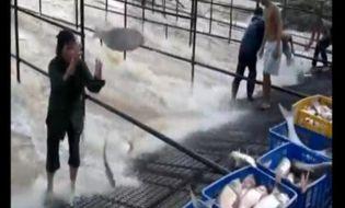 Khám phá - Cách bắt cá trên sông độc nhất vô nhị ở Việt Nam