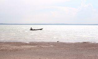 Sự kiện hàng ngày - Cá sấu dài 1,2m sổng ra hồ Trị An