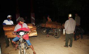 Tài nguyên - Ngăn chặn nhiều điểm nóng phá rừng tại Khánh Hòa