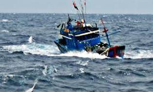 Sự kiện hàng ngày - Tàu cá cùng 10 ngư dân mất tích bí ẩn trên biển Cà Mau