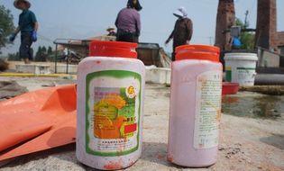 Miền Nam - Phát sợ đặc sản tôm khô: Ngâm hóa chất, đốt cháy khét