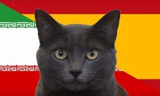 """SEA Games 28 - Video: Tây Ban Nha đón tin vui từ """"tiên tri"""" mèo đen"""