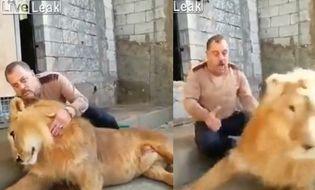 Video-Hot - Video: Vô tình đập vào đầu sư tử, người đàn ông suýt mất mạng