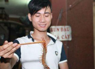 Doanh nhân - Kiếm tiền triệu mỗi tối nhờ quán nhậu... côn trùng