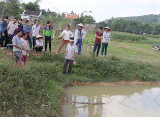 Sự kiện hàng ngày - Nghệ An: Rơi xuống ao nhà, hai anh em sinh đôi tử vong
