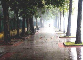 Tin trong nước - Mùng 5 Tết: Hà Nội có mưa phùn trời rét, miền Nam nắng nóng