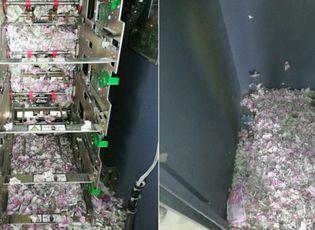 Cây ATM bị chuột