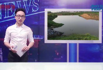Video-Hot - MN1VĐ: Dự án trăm tỷ nhằm cải tạo sông Phan