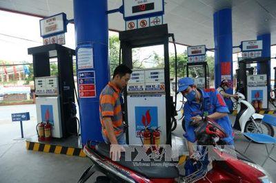 Phó Thủ tướng Vương Đình Huệ: Điều hành giá xăng dầu theo nguyên tắc hài hòa - ảnh 1