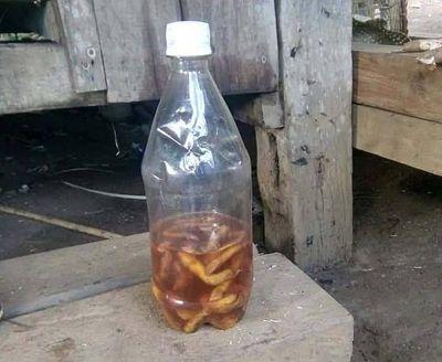Chai rượu chứa độc tố cây lá ngón cướp mạng sống 2 chú cháu ở Quảng Nam - ảnh 1
