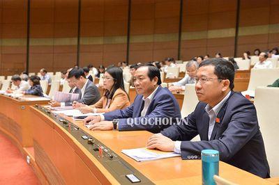 Quốc hội thông qua dự toán ngân sách Nhà nước năm 2019 - ảnh 1
