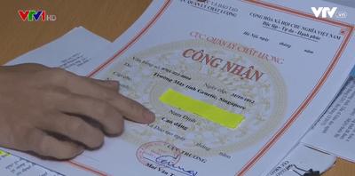Hàng chục nghìn văn bằng quốc tế của du học sinh không được Việt Nam công nhận - ảnh 1