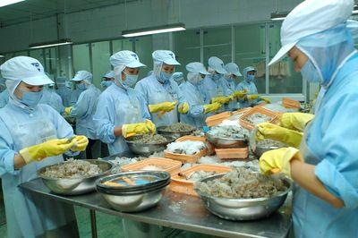 Hai lô tôm xuất khẩu của Việt Nam bị phát hiện có chất cấm - ảnh 1
