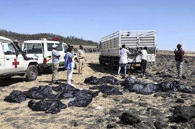 Hàn Quốc cấm các hãng hàng không nhận máy bay 737 Max mới sau thảm kịch Ethiopia - ảnh 1