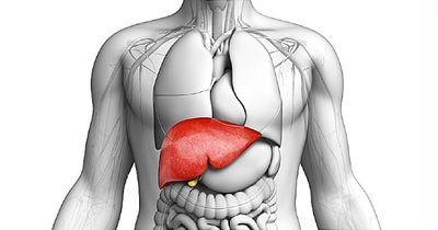 """Tăng men gan: Cẩn trọng những căn bệnh này đang """"đục khoét"""" sức khỏe - ảnh 1"""