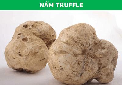 Những loại nấm quý hiếm và đắt đỏ nhất thế giới - ảnh 1
