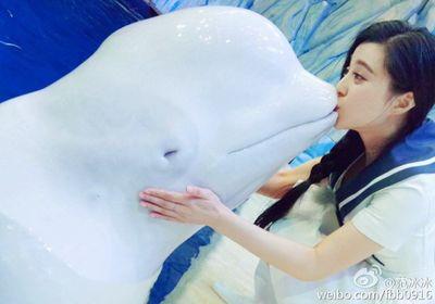 """Bỗng dưng nổi hứng tô son cho cá voi, cô gái hứng """"gạch đá"""" hàng loạt - ảnh 1"""