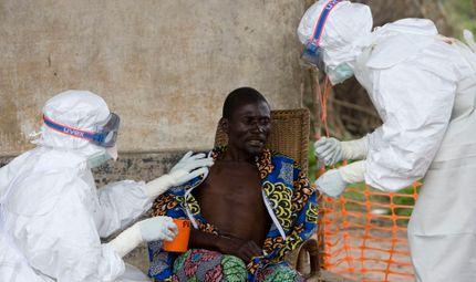Xã hội - Bộ Y tế: Người làm thịt thú rừng bị lây nhiễm dịch Ebola