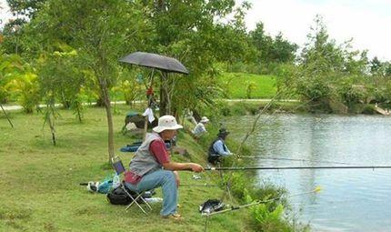 Sản phẩm - Dịch vụ - Cần câu cá, máy câu cá - Cẩn thận khi mua