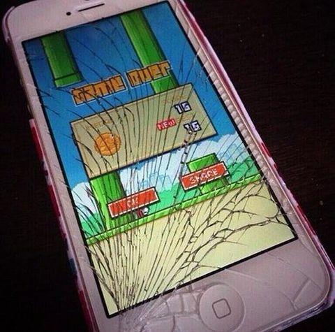 """Hài hước ảnh chế """"sự tức giận"""" của người chơi Flappy Bird  - Ảnh 4"""
