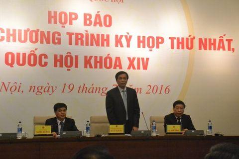 Quốc hội yêu cầu Chính phủ báo cáo vụ Formosa - Ảnh 1