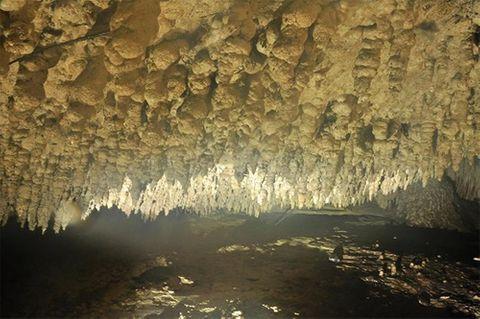 Lại phát hiện hang động tuyệt đẹp gần bằng hang Sơn Đoòng ở Bắc Kạn - Ảnh 5