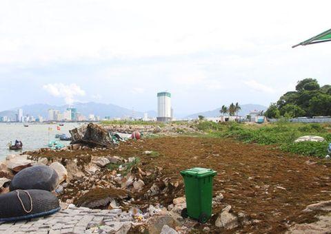 Dự án 33 triệu USD lấn Vịnh Nha Trang bị thu hồi giấy chứng nhận đầu tư