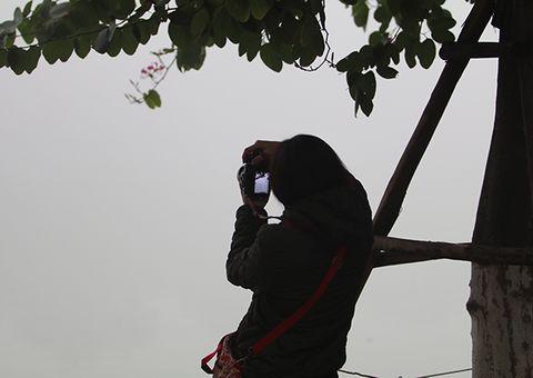 Tin tức - Chùm ảnh: Sương mù dày đặc, người dân thủ đô ngỡ như đang ở Sapa
